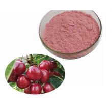 Price fruit Extract Pure Wild Cherry Extract Powder