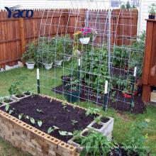 Rede de arame soldado galvanizado para estufas de quintal