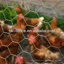 Malla de alambre de ave de corral hexagonal galvanizada sumergida caliente de 3/8 pulgadas