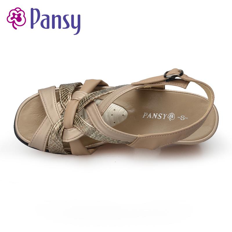 pansy 5337
