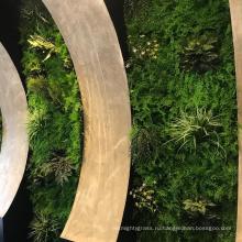 Подгонянный крытый водонепроницаемый зелени искусственные растения стены с листвой