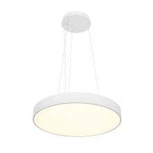 ECOJAS WD-SR-45 40W Indoor Decorative Hanging light LED pendant lamp LED Chandeliers pendant lights