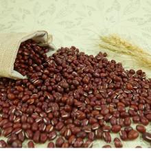 Großhandel Chinesisch Bio Süße Adzuki Zucker Bohnen Preis pro Tonne