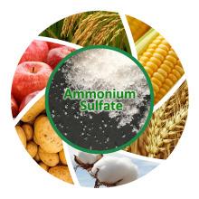 Удобрение (NH4) 2SO4 гранулы Сульфат аммония / сульфат аммония