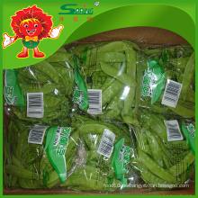 IQF precio de los guisantes verdes (guisantes de nieve congelados) vainas de guisante rápidas