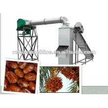 Melhor Palm Day / Jujube levantamento máquina de vitrificação