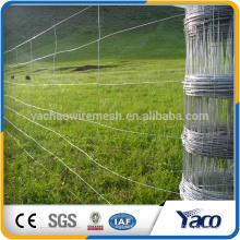 Le plus le bétail de sécurité empêchent 7.5cm 12.5cm 15cm taille de maille Animal cerf ferme escrime clôture de cerf usine vente directe galvaniser