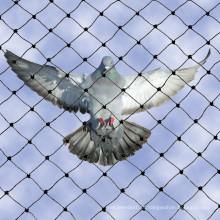2016 Venda Quente De Plástico Pássaro Net Made in China