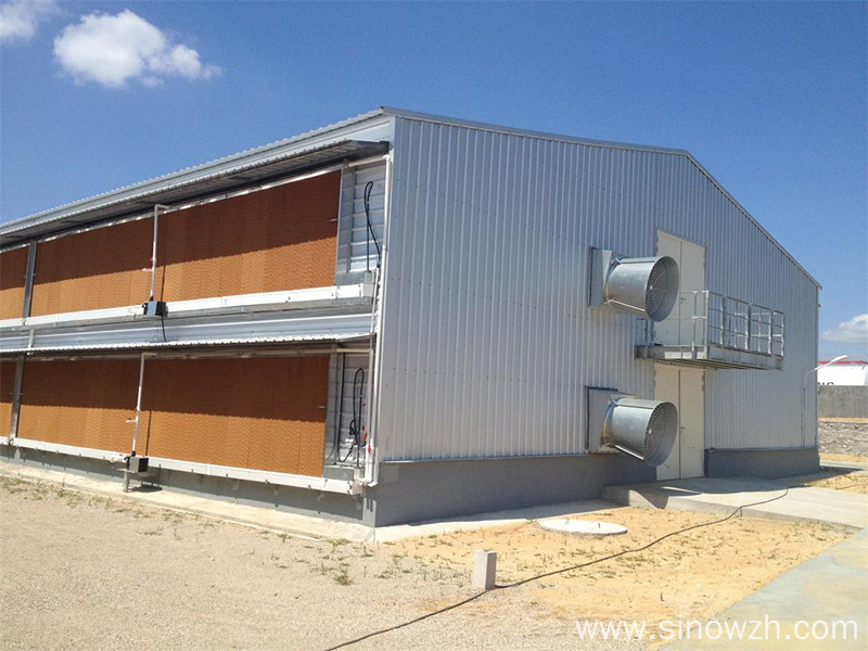 Prefab steel structure chicken shed house with equipment