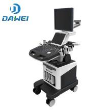 DW-C80plus dual screen 4d digitale farbdoppler ultraschall maschine heißer verkauf in ägypten