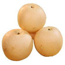 Top Quality Export price Sweet Fresh Chinese Golden Pear Snow Pear