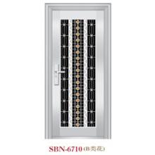 Stainless Steel Door for Outside Sunshine (SBN-6710)