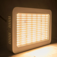 WENYI 2021 Best Selling SMD 1000w Grow Lights