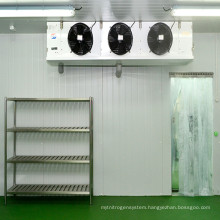 CACR-9 Cold Storage Controlled Atmosphere System for Turkey