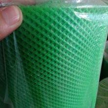 Filet uni en plastique extrudé de couleur verte