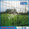 Holland Wire Mesh Fencing