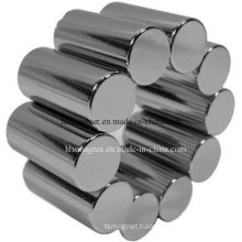 Permanent Rod Magnets with Black Epoxy Plating, Used for Loudspeaker