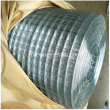 Mesh Welded Wire Mesh For Aquaculture Ternak