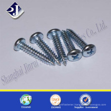 China experienced supplier stainless steel phillips screw