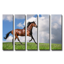 Colorful Decorative Painting Leasted Canvas Prints