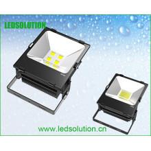 Luz de inundação exterior exterior de poupança de energia do diodo emissor de luz do alumínio 160W
