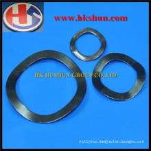 Superior Quality Spring Washer From China (HS-SW-0030)