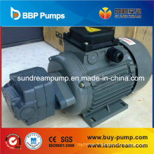 Pompe de transfert d'huile à engrenages cycloïdal interne Bb / Bbg