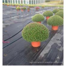 Weed Mat Ground Cover Matriz de controle de plantas daninhas com UV