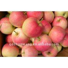 Pomme de gala fraîche
