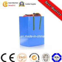 Batterie d'accumulateurs Li-Polymère 12V haute qualité à décharge complète