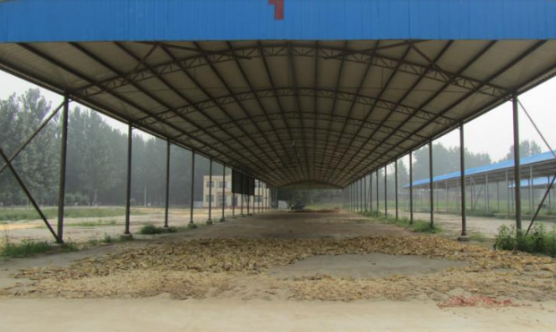 Prefabricated Steel Cow House
