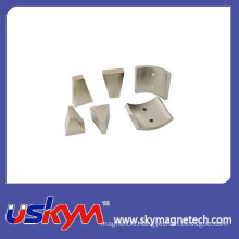Curved Magnets Neodymium Segment Magnet Arc Magnet with Best Price