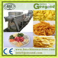 Continuous Vegetable and Fruit Dehydrator Machine