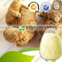 Fabricant Notoginseng Panax Notoginseng Saponins