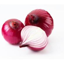 Горячий продавать свежий красный лук культуры; Горячие Продаем Свежий Лук