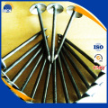 Steel umbrella roofing nails with competitive price