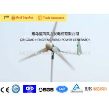 Turbina de vento pequena venda quente