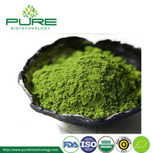 Natural Organic Matcha Powder