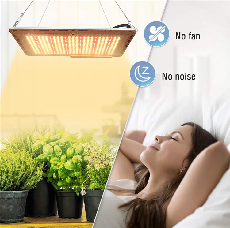 Best Indoor Led Grow Lights