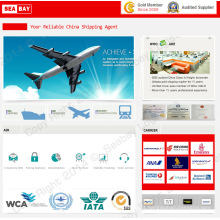 Barato Frete Aéreo / Taxas de Carga De Envio para Bagdá Iraque De Shenzhen / Guangzhou / Shanghai / Beijing