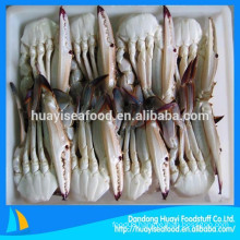 All kinds frozen half cut blue swimming crab high quality
