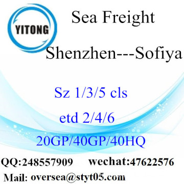 Shenzhen Port Sea Freight Shipping To Sofiya