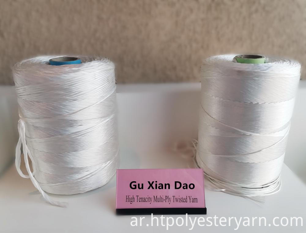 Multi-ply Polyester Yarn