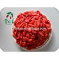 Top-Qualität wasserlösliche Polysaccharid 40% / 50% Goji Beere / Goji Beere PE, konkurrenzfähiger Preis Goji Beere, Wolfberry-Extrakt
