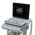 C5Pre tragbares Laptop-Farbdoppler-Ultraschallgerät