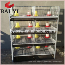 H Type 4 Cage Poulet Cage / Brooder / Day Old poulet Cages à vendre