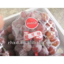 сладкий красный гигант экспорт винограда