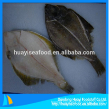 frozen supply yummy flounder with best price