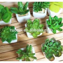 Plantes de succulentes artificielles en gros de haute qualité