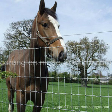 5feet Galvanized Steel Woven Hinge Joint Horse Fence